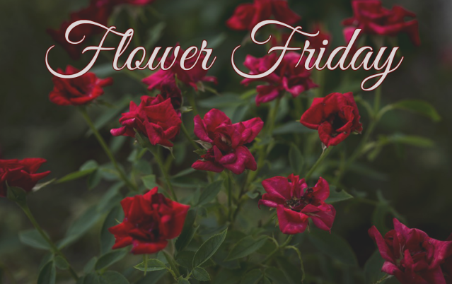 flower friday.png